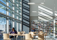 Case Study: Natural Interior Delight Brings Light to Berkeley West Library